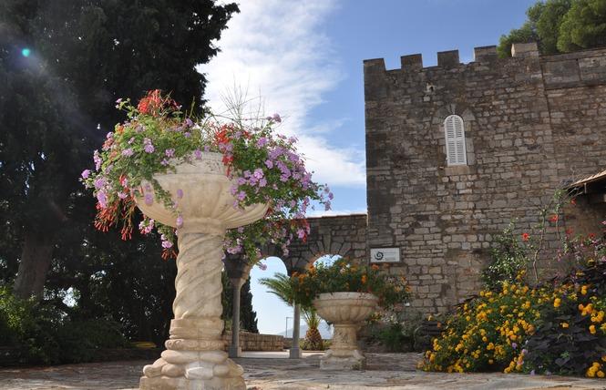Visite guidée : Les riches heures de nos jardins 5 - Hyères