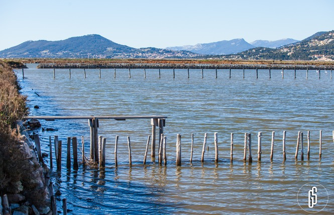 Visite guidée : L'histoire du sel (La Capte) 16 - Hyères