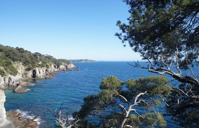 L'Eden de la Presqu'île 7 - Hyères